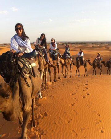 Ride a Camel in the Sahara